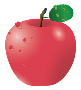 Red Apple. Vector.