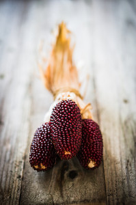 Red Corn On Rustic Wooden Background