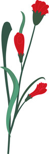 Red Flower Plant Vector
