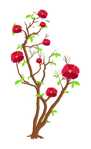 Red Flowers Branches