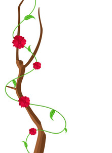 Red Flowers Decorative Frame