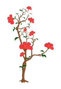 Red Flowers Plant Vector
