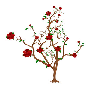 Red Flowers Tree Branches