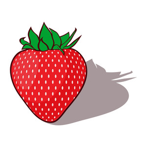 Red Katoon Strawberries. Vector Illustration