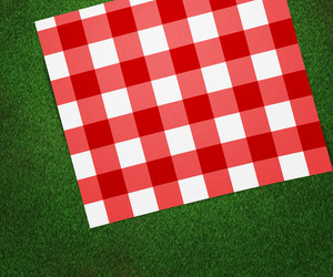 Red Picnic Blanket