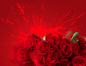 Red Roses Over Splash Background