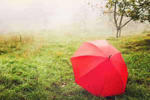 Red umbrella on field