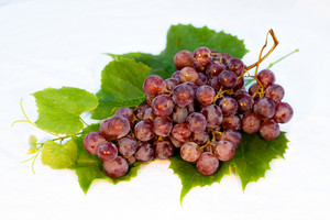 Red wet grapes bunch