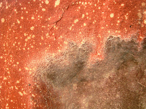 Red_rock_texture