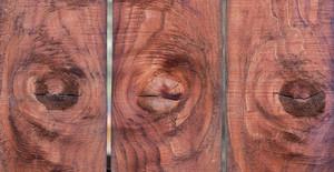 Redwood Knots