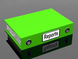 Reports File Shows Business Documents And Accounts