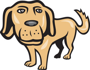 Retriever Dog Big Head Isolated Cartoon