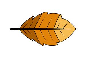 Retro Nature Leaf