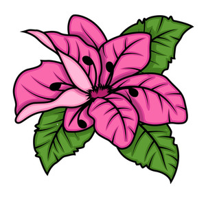Retro Pink Daisy