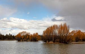Reynolds Pond