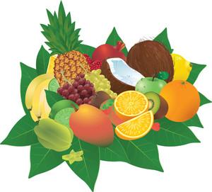 Ripe Fruits. Vector.
