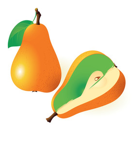 Ripe Pear. Vector