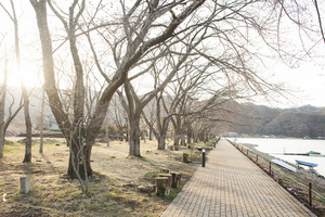 Road near lake in japan