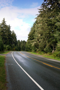 Road To Petersburg Alaska