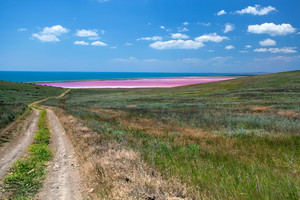 Road to the sea coast and pink mud lake