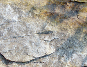 Rock Background Texture 26
