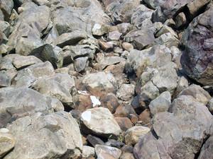 Rock_pebbles