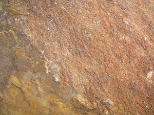 Rock_textured_surface