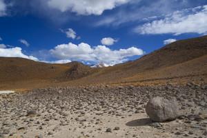 Rocks and desert vegetation under a blue sky