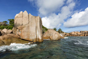 Rocks and tropical vegetation along the beach