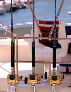 Rods For Fishing In Tropical Waters