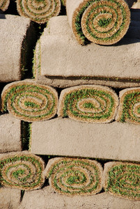Rolls Of Sod (background)