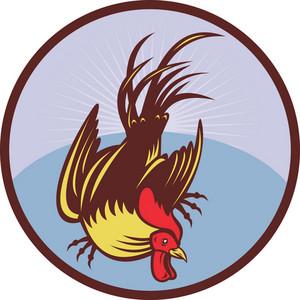 Rooster Cockerel Cock Chicken