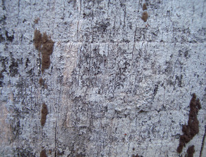 Rough_wood_background