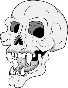 Royalty Free Vector   Head Skull