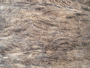 Royalty_free_grunge_wooden_background