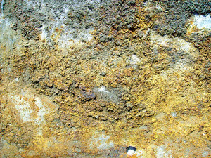 Royalty_free_rust_texture