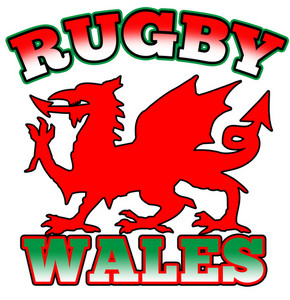 Rugby Wales Flag Dragon