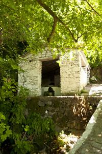 Ruin On Samos