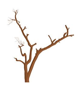 Ruined Dead Tree