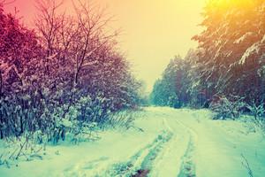 Rural snowy landscape