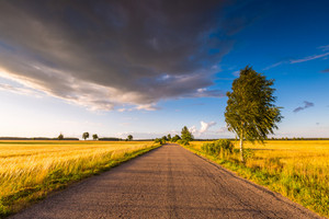 Rural summer landscape with old asphalt road and fields. Beautiful polish landscape.