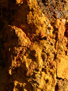 Rust 20 Texture
