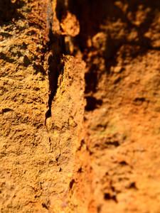 Rust 21 Texture