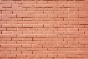 Salmon Brick Wall