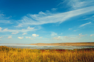 Salty lake and dry grass prairie scenery