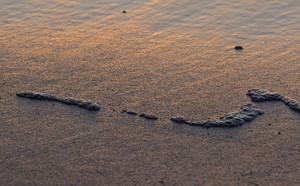 Sand Texture 18