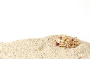 Sand Texture 6