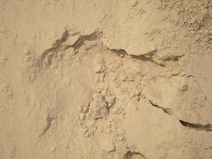Sand_texture_background