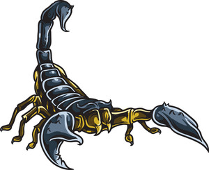 Scorpion Vector Element