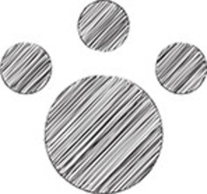 Scribbled Paw Print On White Background